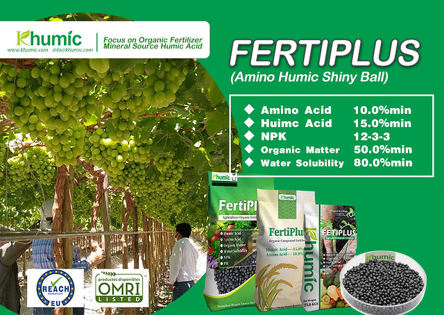 Fertiplus the compound fertilizer made by humic amino acid and NPK