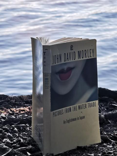 Buch Bücher Lesen Literatur Lektüre John David Morley © Books Reading Literature ©