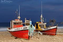 Artisanal fishing boats - Icons of Uruguay