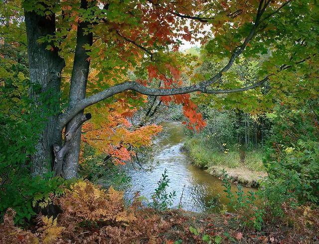 The Betsie River