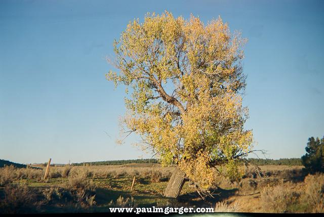 Wyoming Colors - Agfa Clack