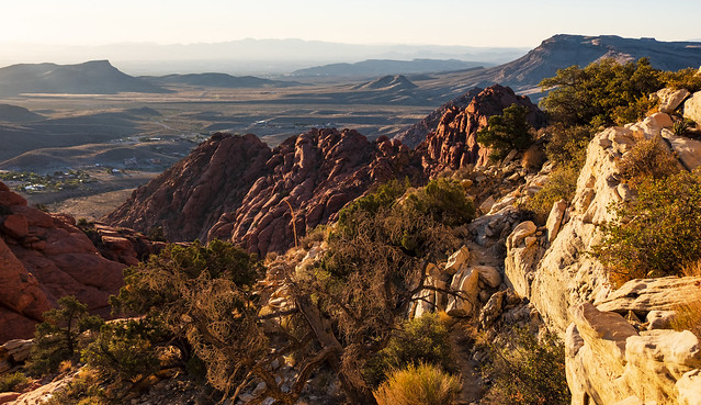 Landscape from Calico View Point