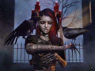 Dream the Crow black Dream…