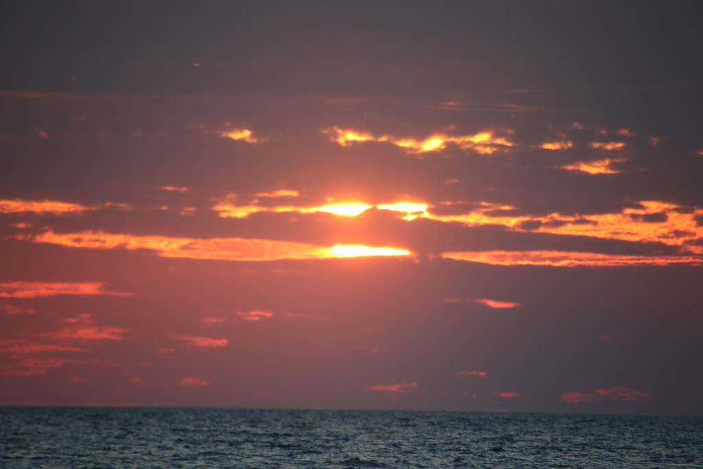Cape May Whale & Dolphin Watch Oct. 15 2021