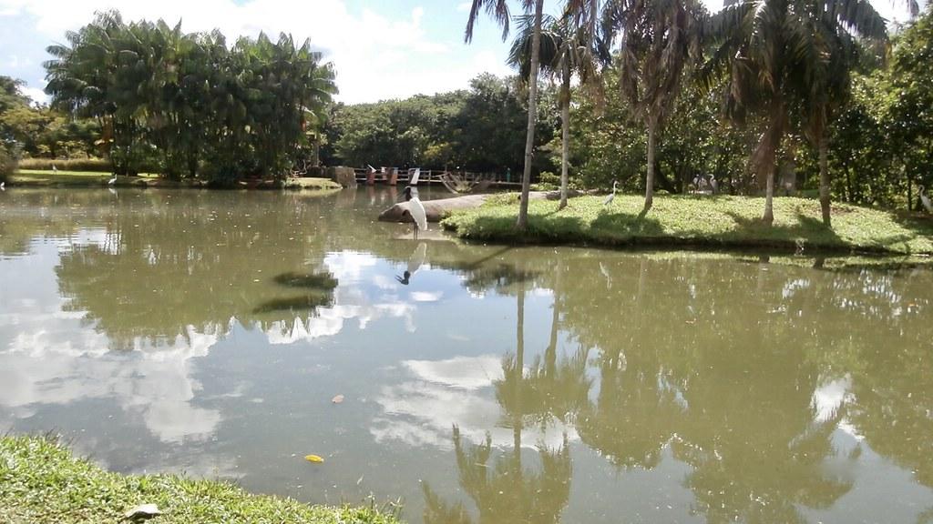 Mangal das Garças, Belém - PA Brazil