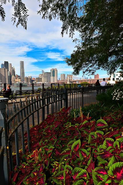 Brooklyn Hts. Promenade