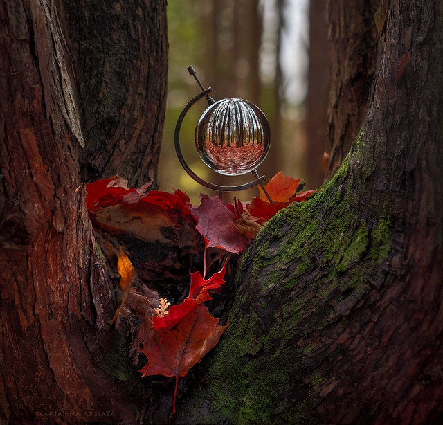 I see autumn in my crystal ball