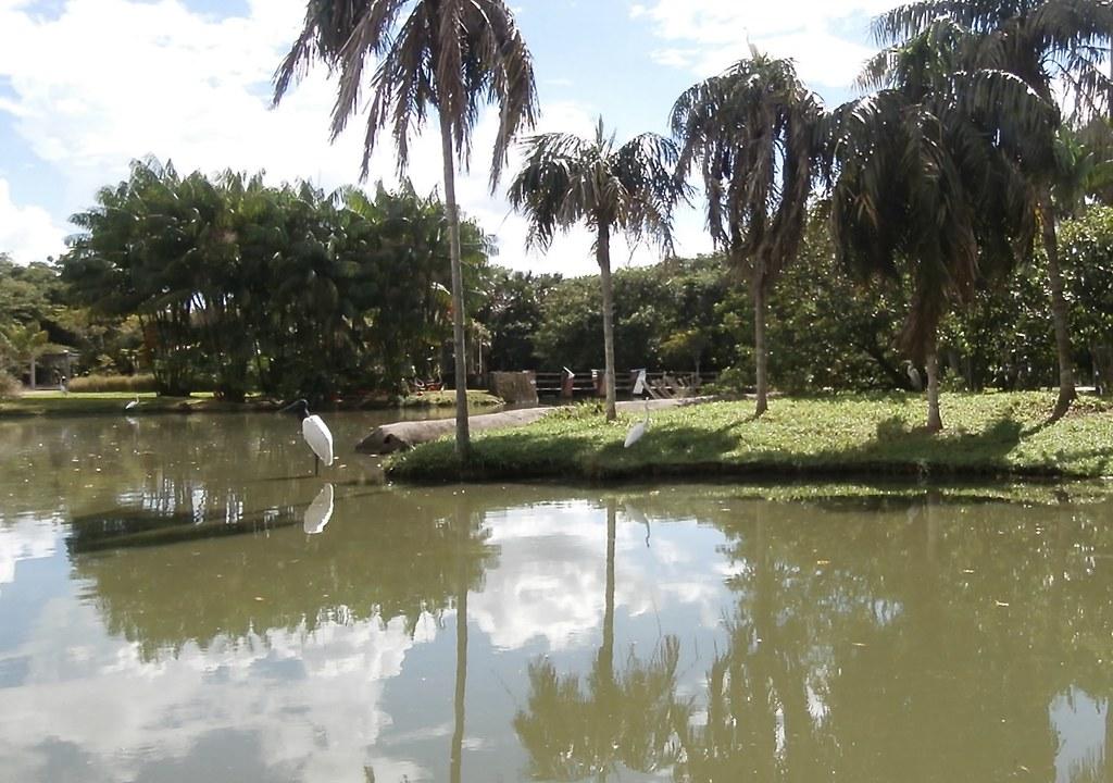 Mangal das Garças, Belém - PA
