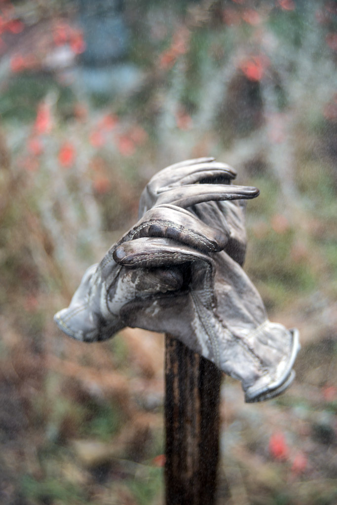 Gloves on Post