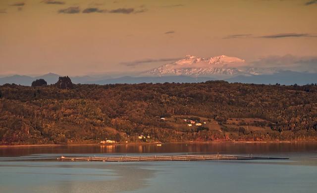 En casa, Quemchi, Chiloé, 2021