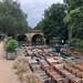 Oxford botanic gardens-10