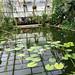 Oxford botanic gardens-12