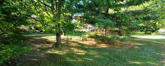 Front Yard Shadowplay