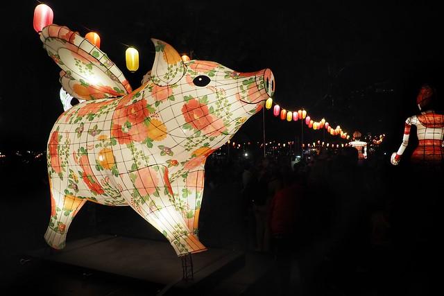 moon lantern trail - pig