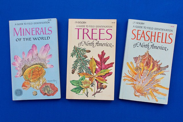 Minerals, Trees and Seashells