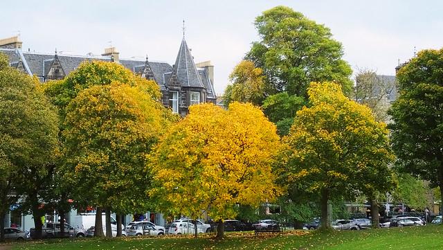 Autumn On The Links
