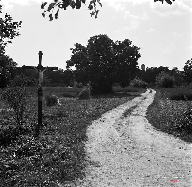 Cross along the Road