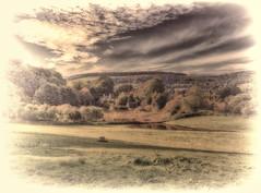 """Amberley #2 """"Across the fields"""""""