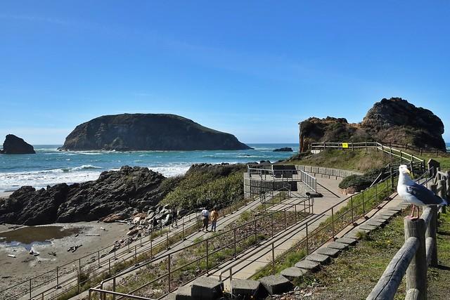 Harris Beach access