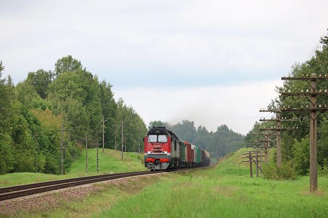 Тепловоз 2ТЭ25КМ-0044 с грузовым составом на перегоне Городок/Залучье.
