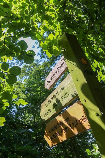 Speedy's Path, Earlston