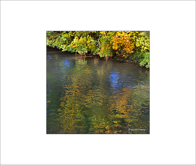 Reflets d'automne...