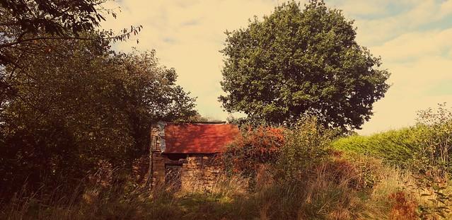 Rural mood.