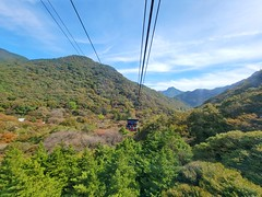 Beautiful cable car ride at the top of the Naejangsan National Park! ud83cudf42ufe0f #SouthKorea #exploreROK #Korea #travel #exploreKorea #travel #NaejangsanNationalPark #NationalPark #KoreanNationalPark #SouthKoreaNationalPark #fall #fallseason #autumn