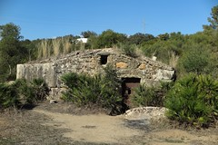 Antiguo molino. Guadiamar