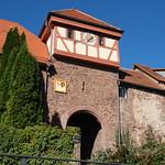 Neckartal_2021-10