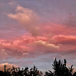 24. Oktoober 2021 - 7:29 - Red Sky in the morning. A portent of bad weather to come?