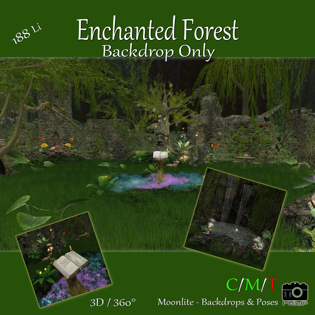 Enchanted Forest – BDonly