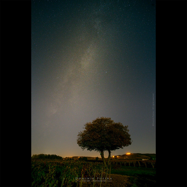Under stars | Beaujolais