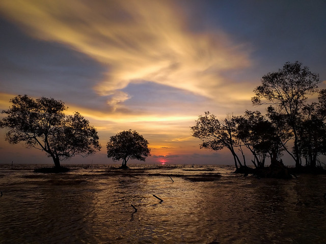Sungai Bakau Seashore