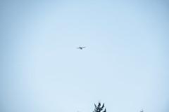 Airplane 2021 10 08 01