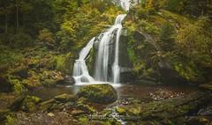 Schwarzwald Triberg Waterfalls (Triberger Wasserfalle)