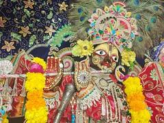 Shri Damodar ji Maharaj : u0428u0440u0438 u0414u0430u043cu043eu0434u0430u0440 u0434u0436u0438 u041cu0430u0445u0430u0440u0430u0434u0436