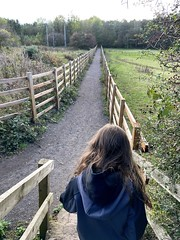 Walk to the farm for some eggs
