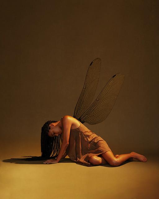 Unfolding New Wings