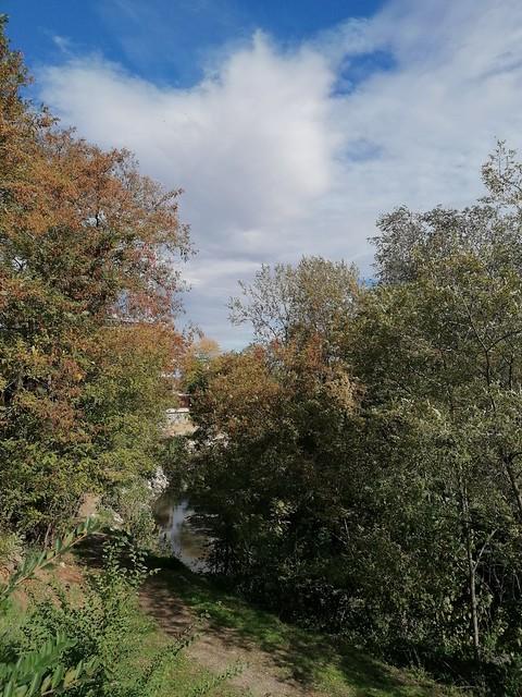 Autunno nel parco (versione verticale)