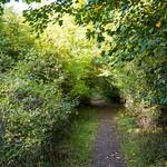 Nowton Park