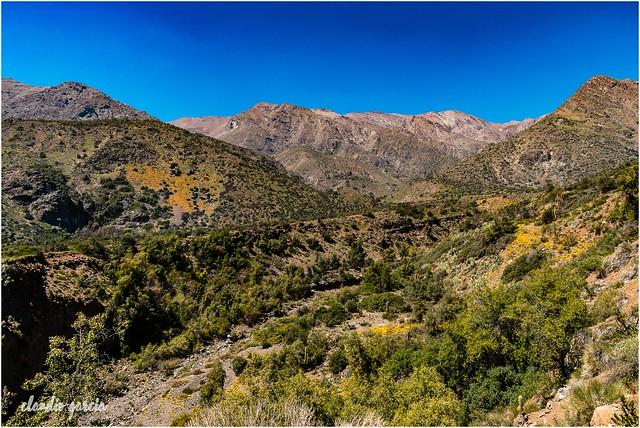 Caminando entre cerros / Walking between hills