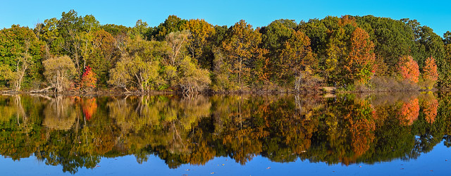Beautiful Fall Morning Horn Pond Lagoon 24 October 2021