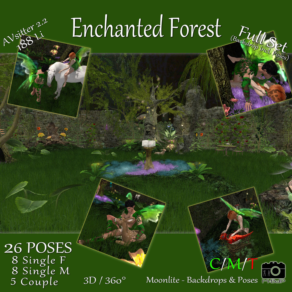 Enchanted Forest – Full Set