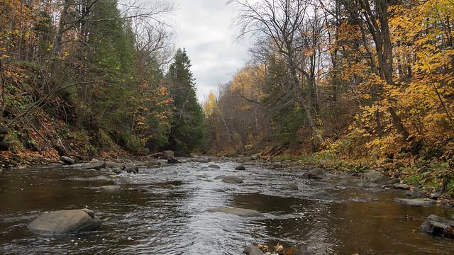 Rivière Berger, Parc de l'escarpement, automne, Quebec, PQ, Canada - 08019