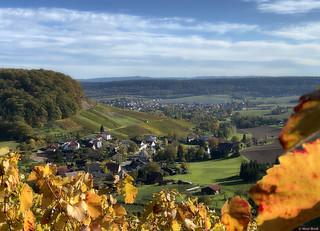 Eberstadt - Buchhorn