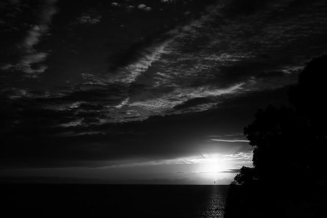El cielo, el mar, las nubes y el sol nos dieron la bienvenida. Los rayos del sol calentaron mi cuerpo. Me pregunto hasta dónde volaré hoy.