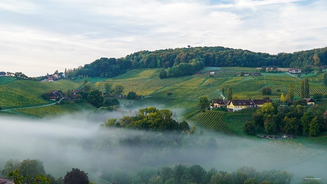 Nebel am Grassnitzberg