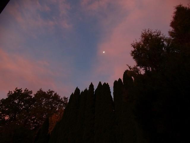 DSC04444 Moonset Sunrise