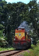 ERS WDM3A Twins 14046 loco leading Guruvayur-Punalur express passing through Kundara East outskirts